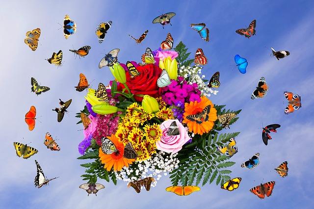 kytice s motýli