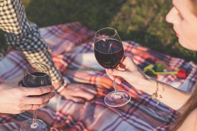 dva lidé ťukající se sklenicemi vína na pikniku